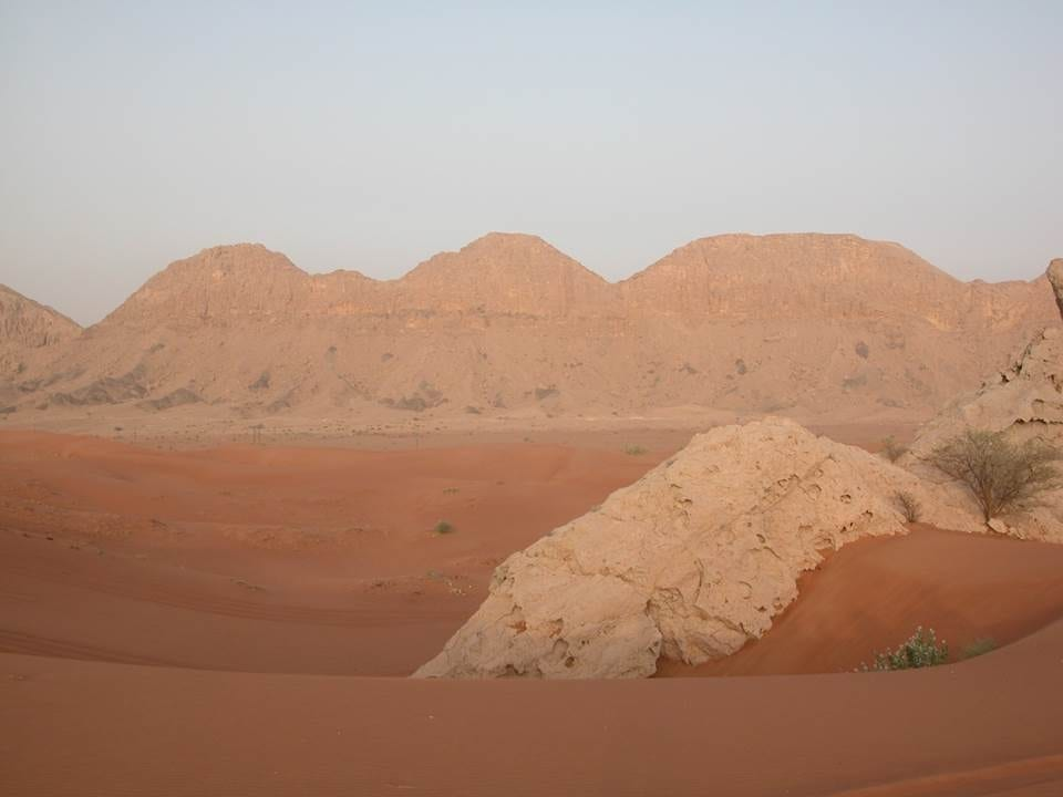 Dune Safarying in Sharjah
